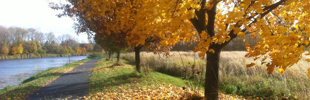 podzim.jpg